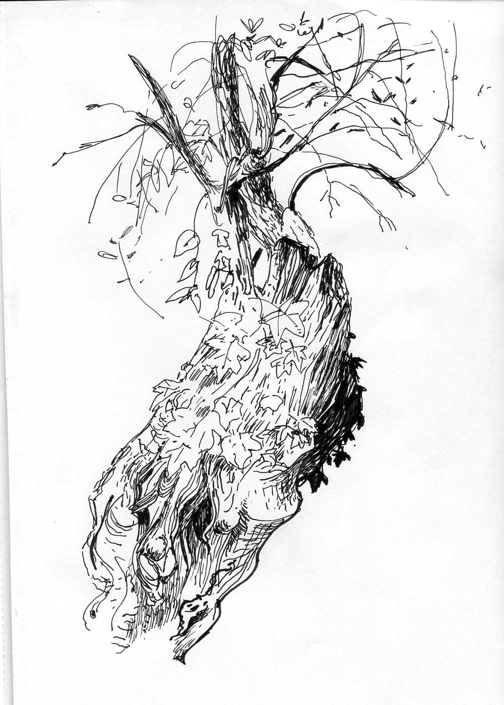 olivier028